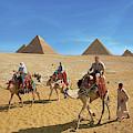 Egypt, Cairo, Giza, Tourists Ride by Miva Stock