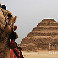 Egypt Step Pyramid Saqqara by Bob Christopher