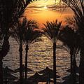 Egypt Sunrise by Jane Rix