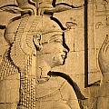 Egyptian Queen by Brenda Kean