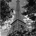 Eiffel Through Trees Bw by Ken Johnson