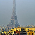 Eiffel Tower From Notre Dame by Vladimir Rayzman