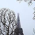 Eiffel Tower - Paris France - 011318 by DC Photographer