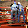 Rodeo Eight Seconds To Payday by Bob Christopher