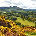 Eildon Hill - Three Peaks And A Valley by Elena Perelman
