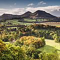 Eildon Hills   by David Head