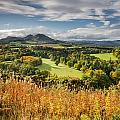 Eildon Hills In Autumn by David Head