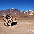 El Arbol De Piedra Bolivia by James Brunker