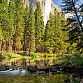El Cap And Merced River by Cat Connor
