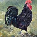 El Gallo - The Cockerel by Margaret Merry