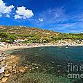 Elba Island - Beach In Seccheto  by Antonio Scarpi