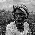 Elderly Indian Farmer by Image World