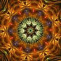 Electric Mandala 1 by Rhonda Barrett