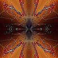 Elektron by Raymel Garcia