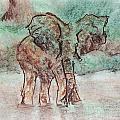 Elephant Bath by Ashley King