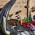 Elephant Celebration by Kathy Clark
