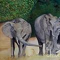 Elephant Family Gathering by Caroline Street