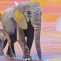 Elephant Fantasy Must Open by Phyllis Kaltenbach