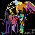 Elephant In Colour by Go Van Kampen