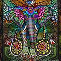 Elephant Dream by Julie Oakes