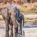 Elephant Mother And Calf by Liz Leyden