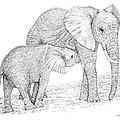 Elephant Mother by Debra Boyle