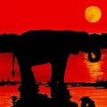 Elephant Silhouette African Sunset by Michael Vigliotti