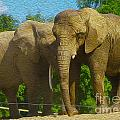 Elephant Snuggle by Nina Silver