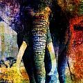 Elephant by Wendie Busig-Kohn
