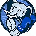 Elephant With Boxing Gloves Democrat Mascot by Aloysius Patrimonio