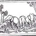 Elephants by Balakrishnan Pt