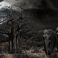 Elephants Of The Serengeti by Daniel Hagerman