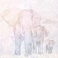 Elephants - Sketch by John Edwards