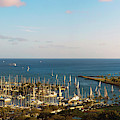 Elevated View Of Boats At A Harbor by Panoramic Images