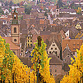 Elevated View Of The Riquewihr by Panoramic Images