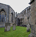 Elgin Cathedral Community - 6 by Paul Cannon