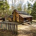 Elijah Olivers Cabin by Doug McPherson