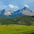 Elk Below Mount Sneffels by Dan Miller