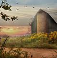 Elk County by Lori Deiter