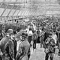 Ellis Island Immigration Hall, 1890s by Bildagentur-online
