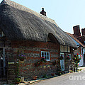 Elm Cottage Nether Wallop by Terri Waters