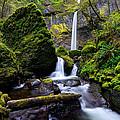 Elowah Falls by Dustin  LeFevre