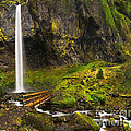Elowah Falls Panorama -  Columbia River Gorge In Oregon by Jamie Pham