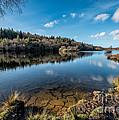 Elsi Reservoir by Adrian Evans