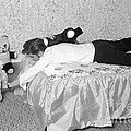 Elvis Presley At Home With His Teddy Bears 1956 by The Harrington Collection