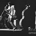 Elvis Presley Performing At The Fox Theater 1956 by The Harrington Collection