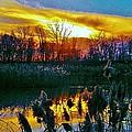 Emagin Sunset by Daniel Thompson