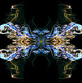 Emblem 4 by Stefan Dulman