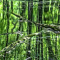 Emerald Reflections by Optical Playground By MP Ray
