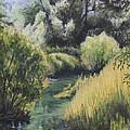 Emerald Creek by Michael Beckett